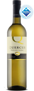 Quercus Pinot Bianco from Slovenia