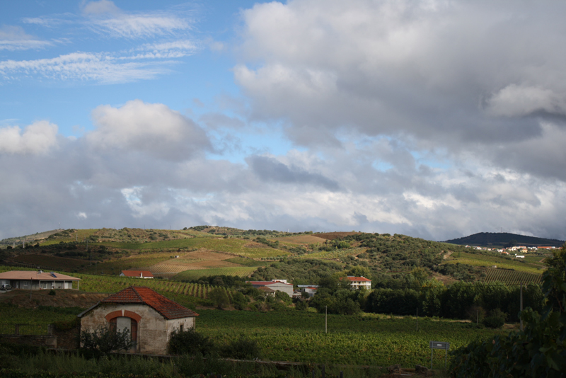 A View from Quinta da Sequeira