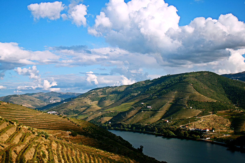 A view from the Douro Valley