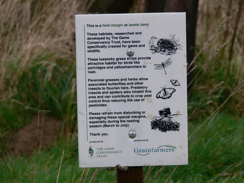 Area set aside for improved habitat for English Grey Partridge
