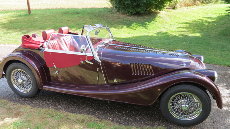 Burgundy Morgan 4+4