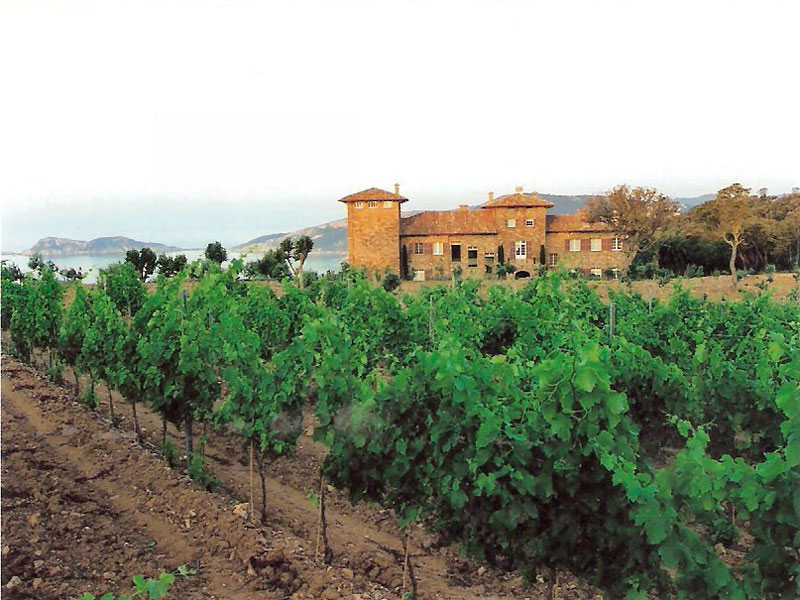 Chateau Volterra and Vineyard