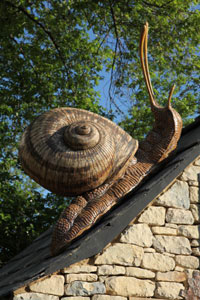 David-Cooke,-born-1970-Giant-Snail