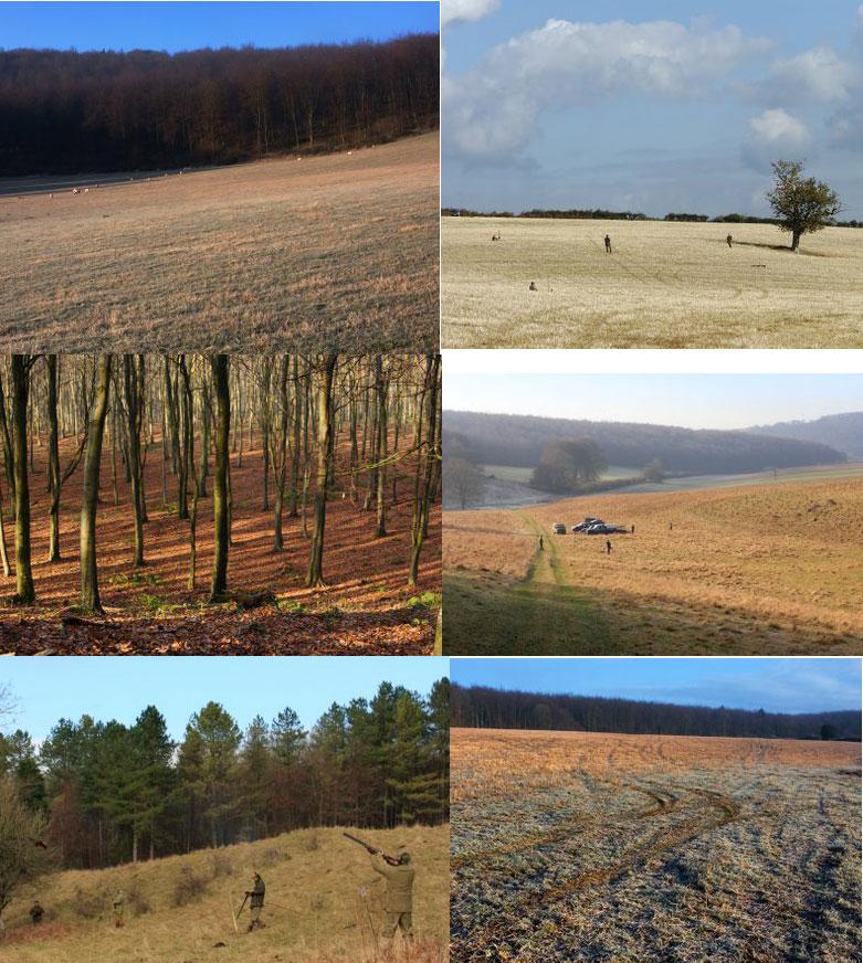 East Dean Shoot Stunning Countryside