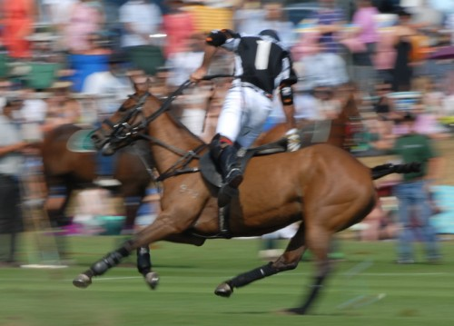 Facundo Pieres Dubai Team in full action