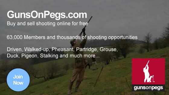 GunsonPegs-logo