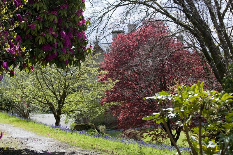 Hotel Endsleigh Spring Garden