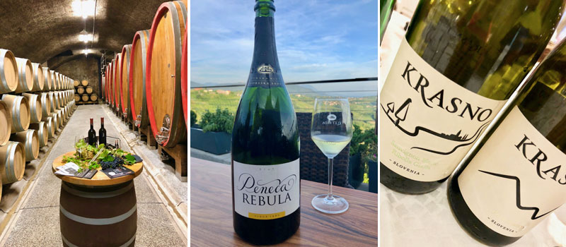 Klet Brda Wine Cellar and Klet Brda Rebula Sparkling Wine and Krasno Wines