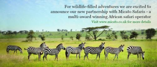 Pure-Powder-and-Micato-Safaris