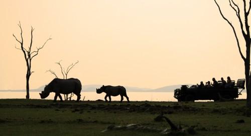 Rhino Safari Camp Zimbabwe
