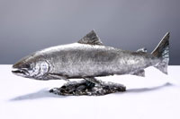 SILVER-SALMON-by-David-Williams-Ellis