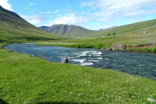 Svartá in Iceland
