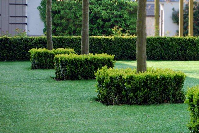 Taylor Tripp Landscape Design Boxsquares