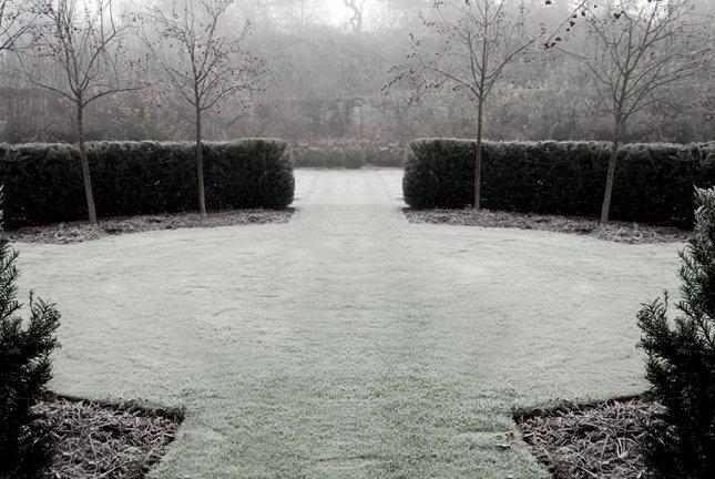 Taylor Tripp Landscape Design Lawnandmalus