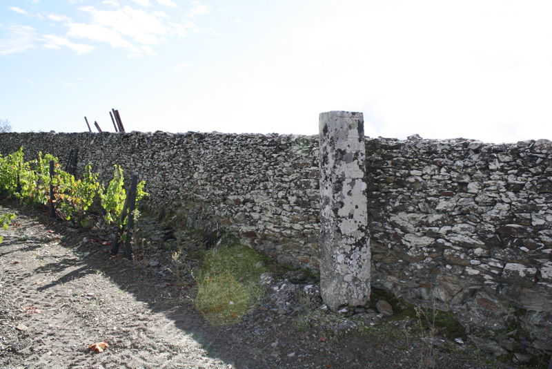 The Original Stone Pillar in Bulas Vineyard