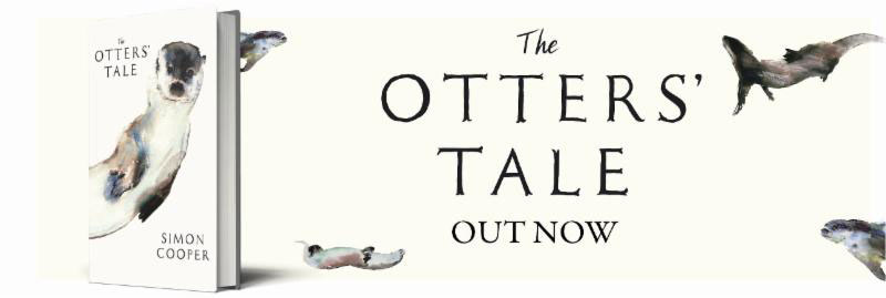 The Otters Tale by Simon Cooper of Fishing Breaks