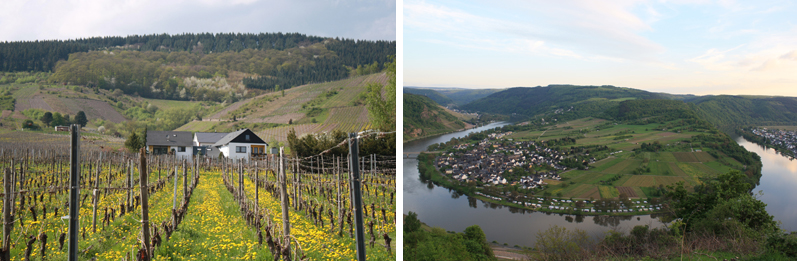 Views of Mosel Germany