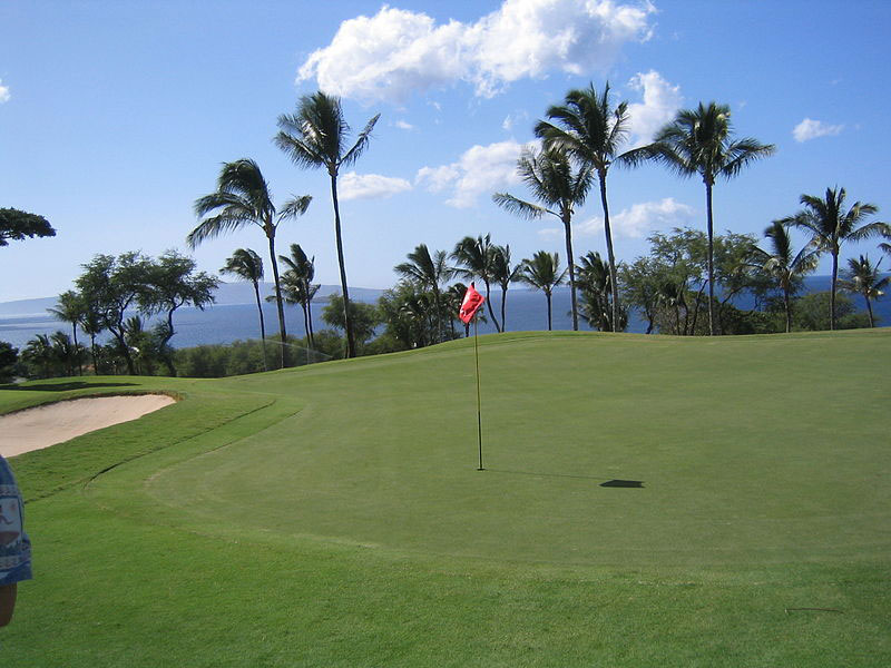 Wailsea Gold Course Hawaii