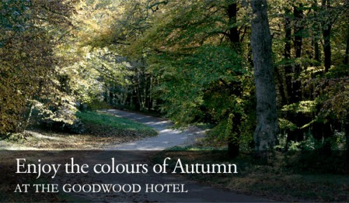 Enjoy the Colours of Autumn at the Goodwood Hotel