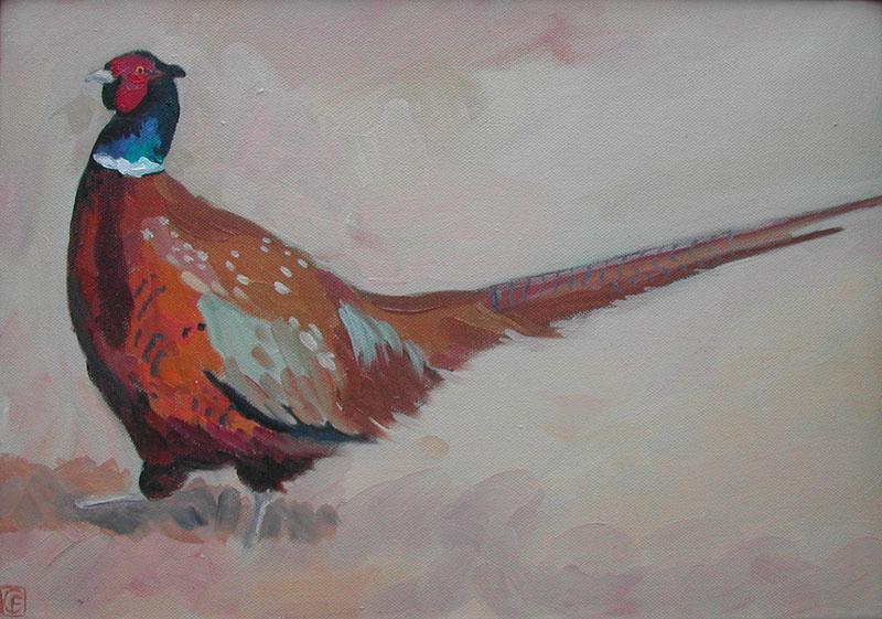 Pheasant 4