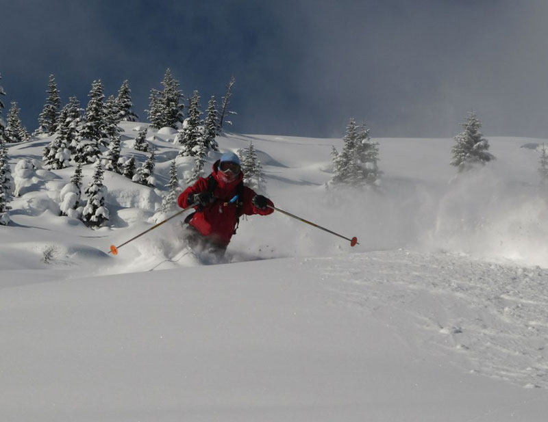 Skiing in Deep Powder amongst the Trees
